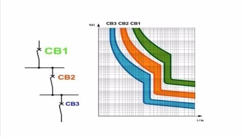 Naniesione charakterystyki czasowo-prądowe na jednym wykresie